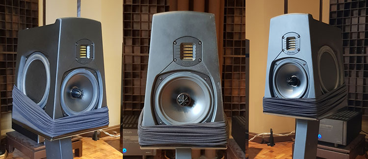While Their Larger Speakers Do Have Centrally Mounted Tweeters It Shows That Goldenear Went The Extra Mile To Optimize Aon 3