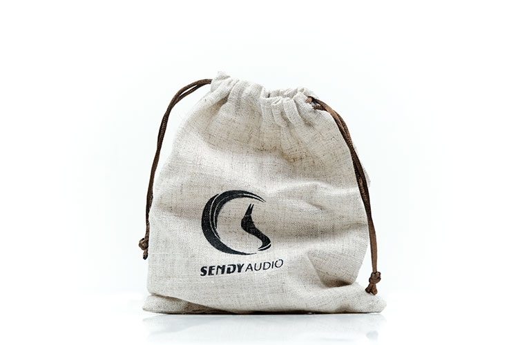 SendyAudio Aiva