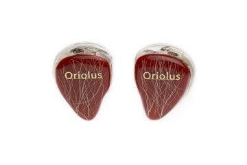 Oriolus Traillii